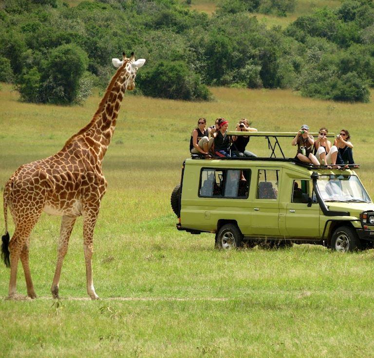 Safari Package in Dar Es Salaam Hotel